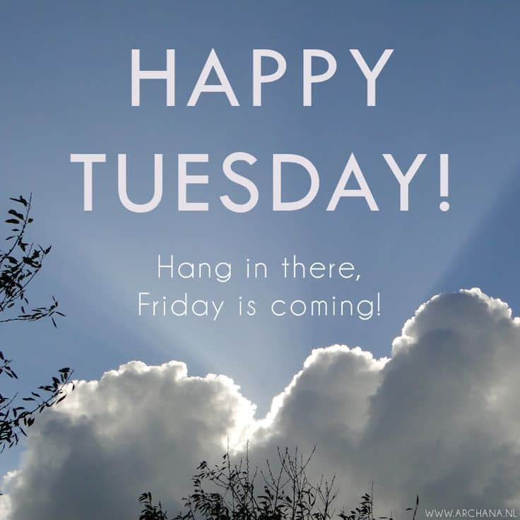 156562-Happy-Tuesday-Hang-In-There